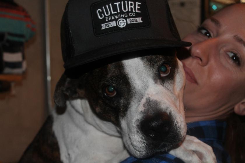 culture dog hat